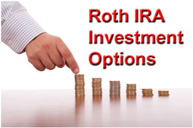 Roth IRA Investment Options